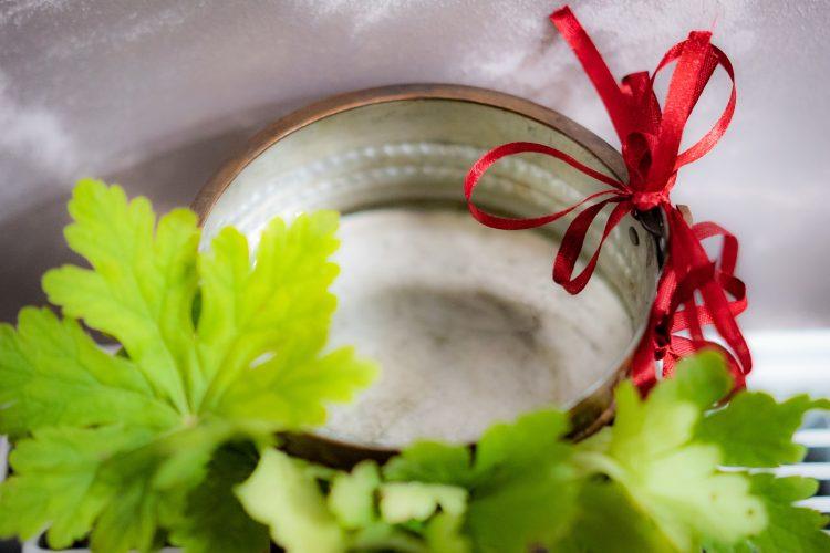 svatbeni-tradicii-i-obichai-v-sofia